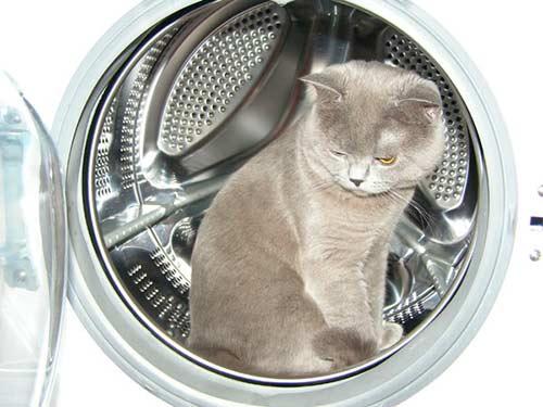 Ремонт стиральной машины своими руками: полезные советы, фото, видео